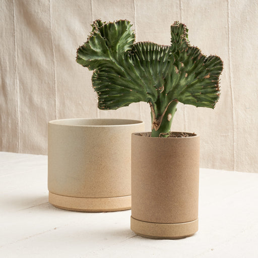 Planter in Unglazed Porcelain