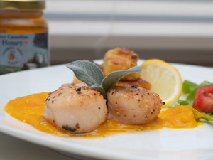 Seared Scallops with Honey Buttercup Squash Puree