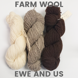 Ewe and Us Farm Wool