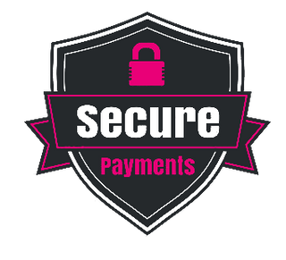 Secure payment to buy iPhone cases