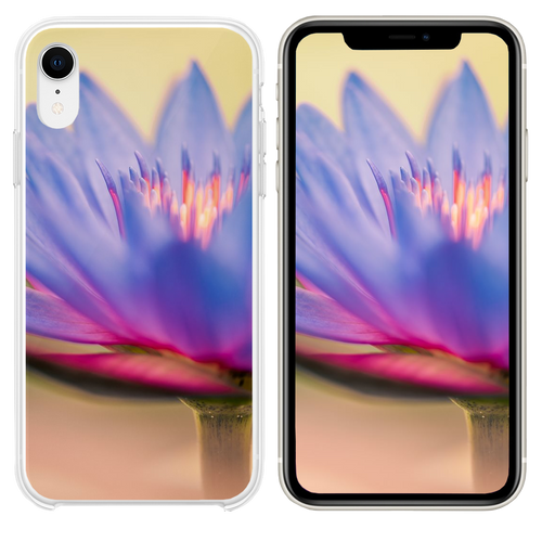 Colorful Bloom of a Lilly iPhone XR case