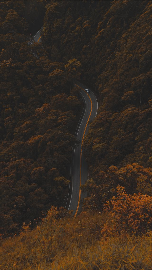 High Angle Photography Of Road Between Trees iPhone XS Wallpaper
