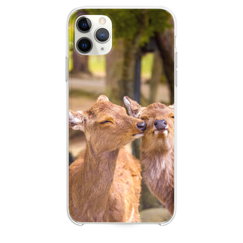 Nara Park Nara Japan iPhone 11 Pro Max case