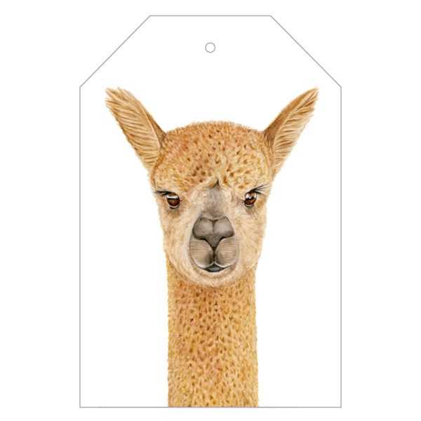Alice the Alpaca Gift Tags - For Me By Dee