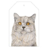 Otto the British Short Hair Cat Gift Tag Pack - For Me By Dee