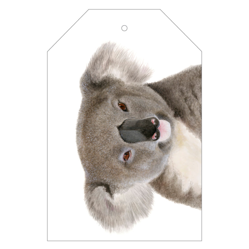 Kev the Koala Gift Tags - For Me By Dee