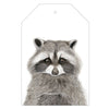 Rocco the Raccoon Gift Tag Pack - For Me By Dee