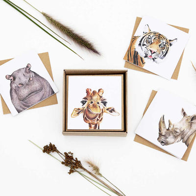 Safari Mini Greeting Card Box Set - For Me By Dee