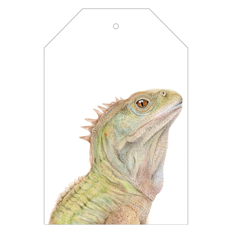 Triton the Tuatara Gift Tags - For Me By Dee