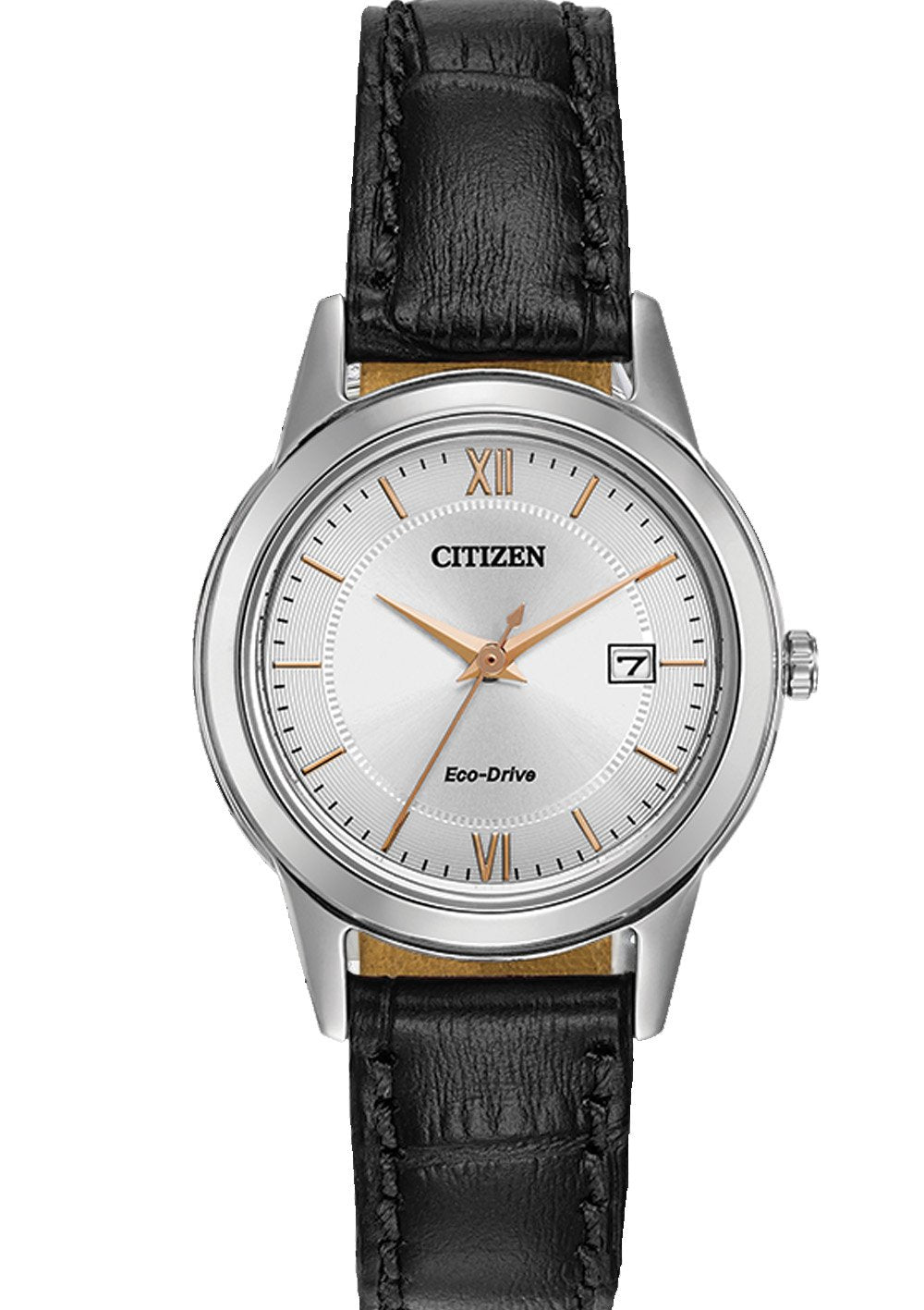 Citizen Eco Drive Corso Women's Watch FE1086-04A