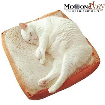 Bread Toast Cat's Bed