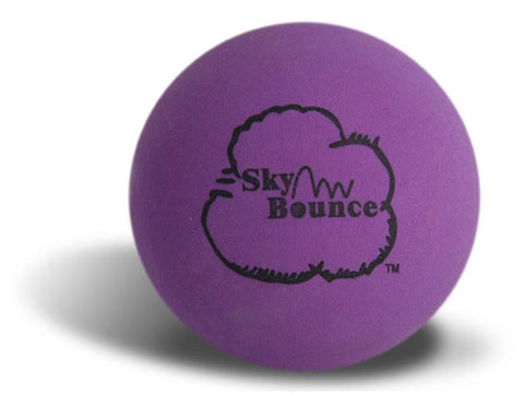 SKY BOUNCE - PURPLE BALLS  - 12CT/UNIT