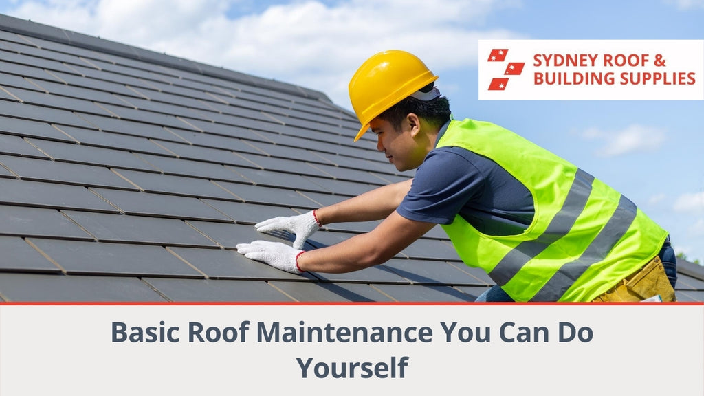 Basic Roof Maintenance You Can Do Yourself
