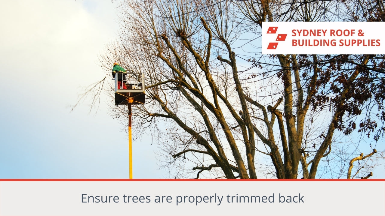 Ensure trees are properly trimmed back