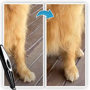 PawTRIM Low Noise Paw Fur Trimmer