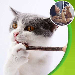 Cat Molar Matatabi Chew Sticks