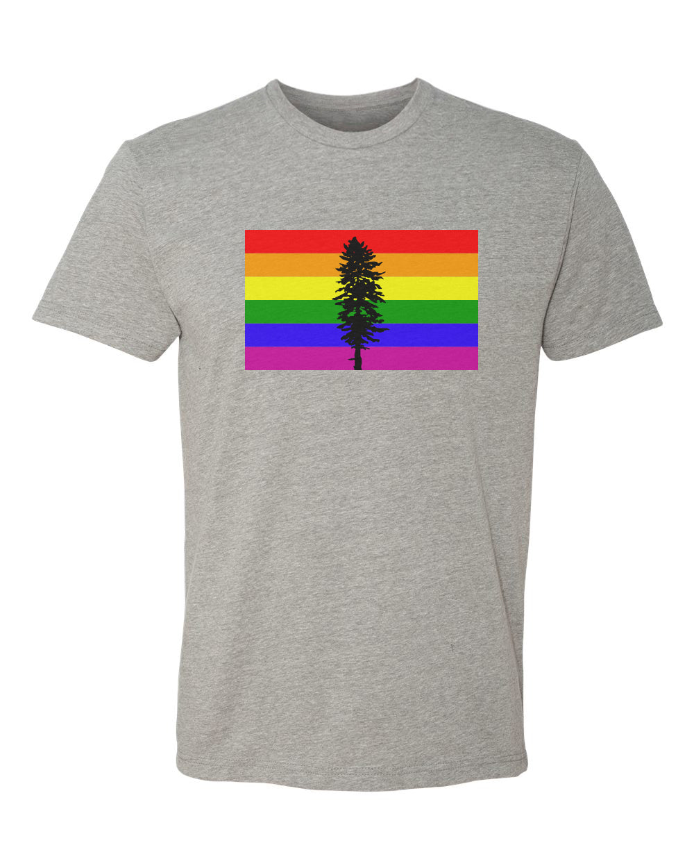 Rainbow Cascadia Flag T-Shirt Grey