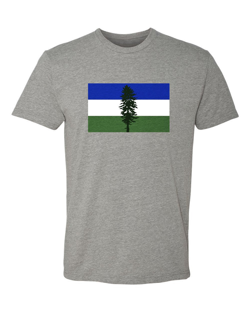 Cascadia Flag T-Shirt Grey