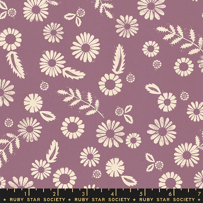 Golden Hour Lilac Daisy (RS4017 12)