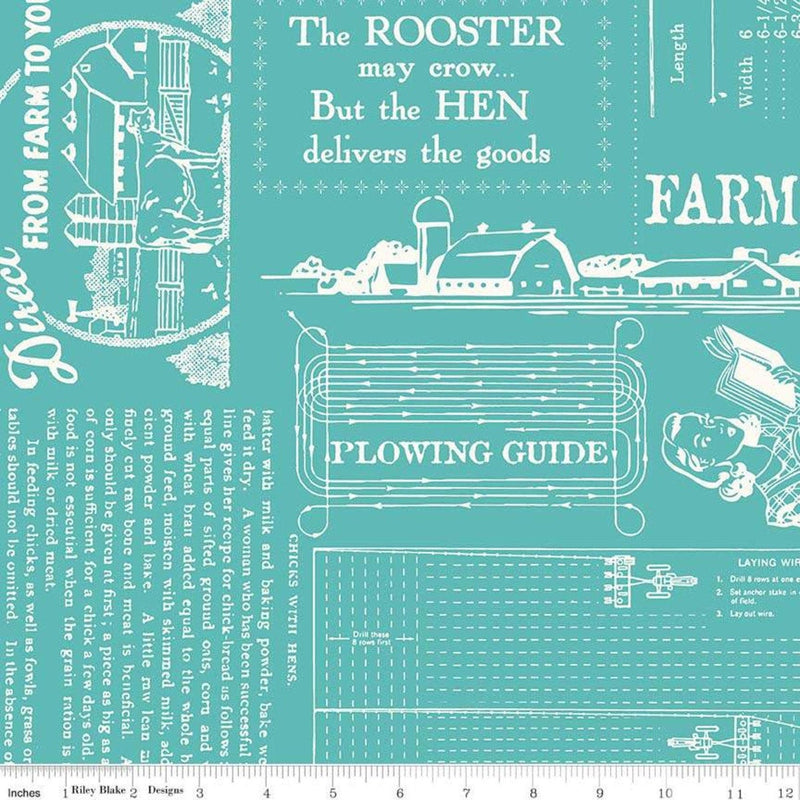 "Farm Girl Vintage Cottage Farm Girl Life 108"" Wide by Lori Holt fabric for Riley Blake Designs (WB7887 COTTAGE)"