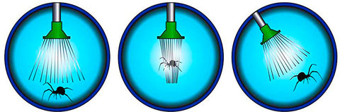 spider bug catcher trap and release