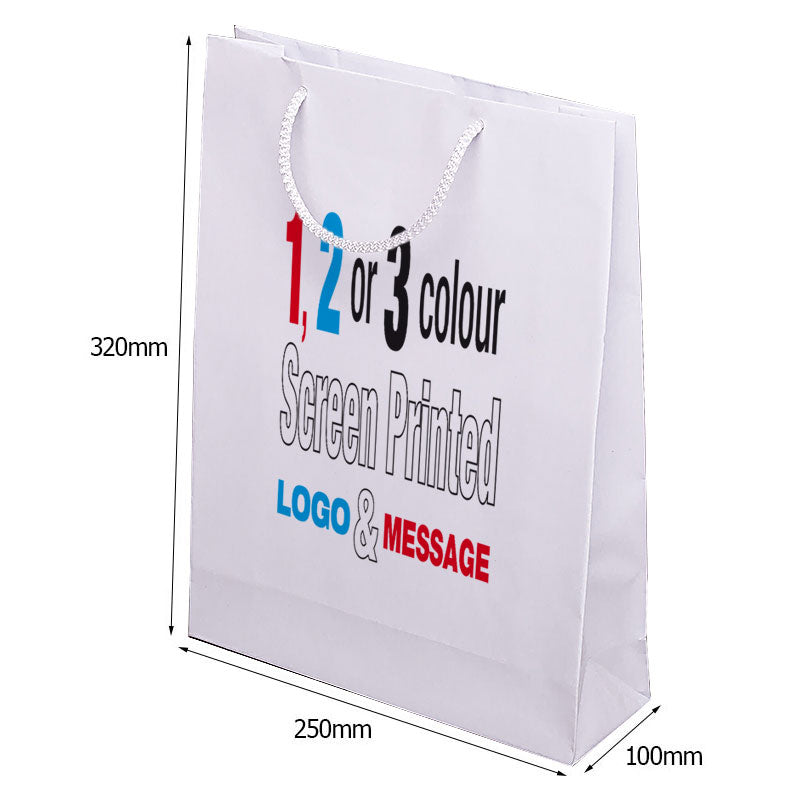 A4 Gloss Rope Handle Bags Fast Track, whach have an oversize capacity to hold literature.