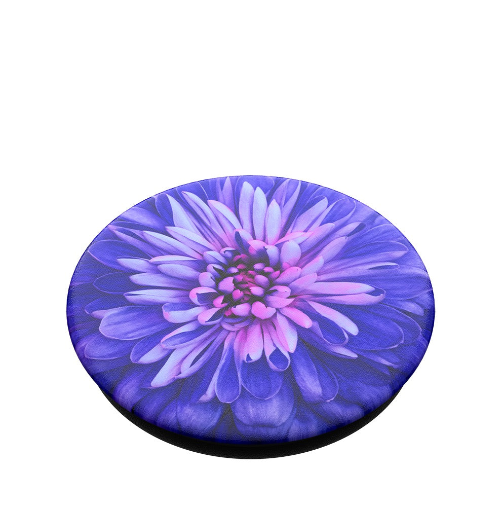 Swappable PopTop Be A Dahlia, PopSockets