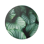 Swappable Leafy Greens, PopSockets
