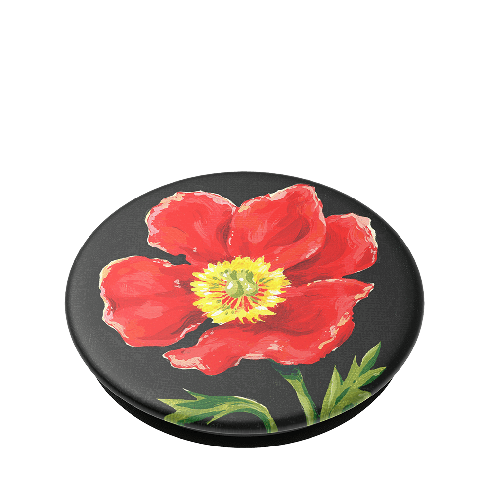 What's Poppying?, PopSockets