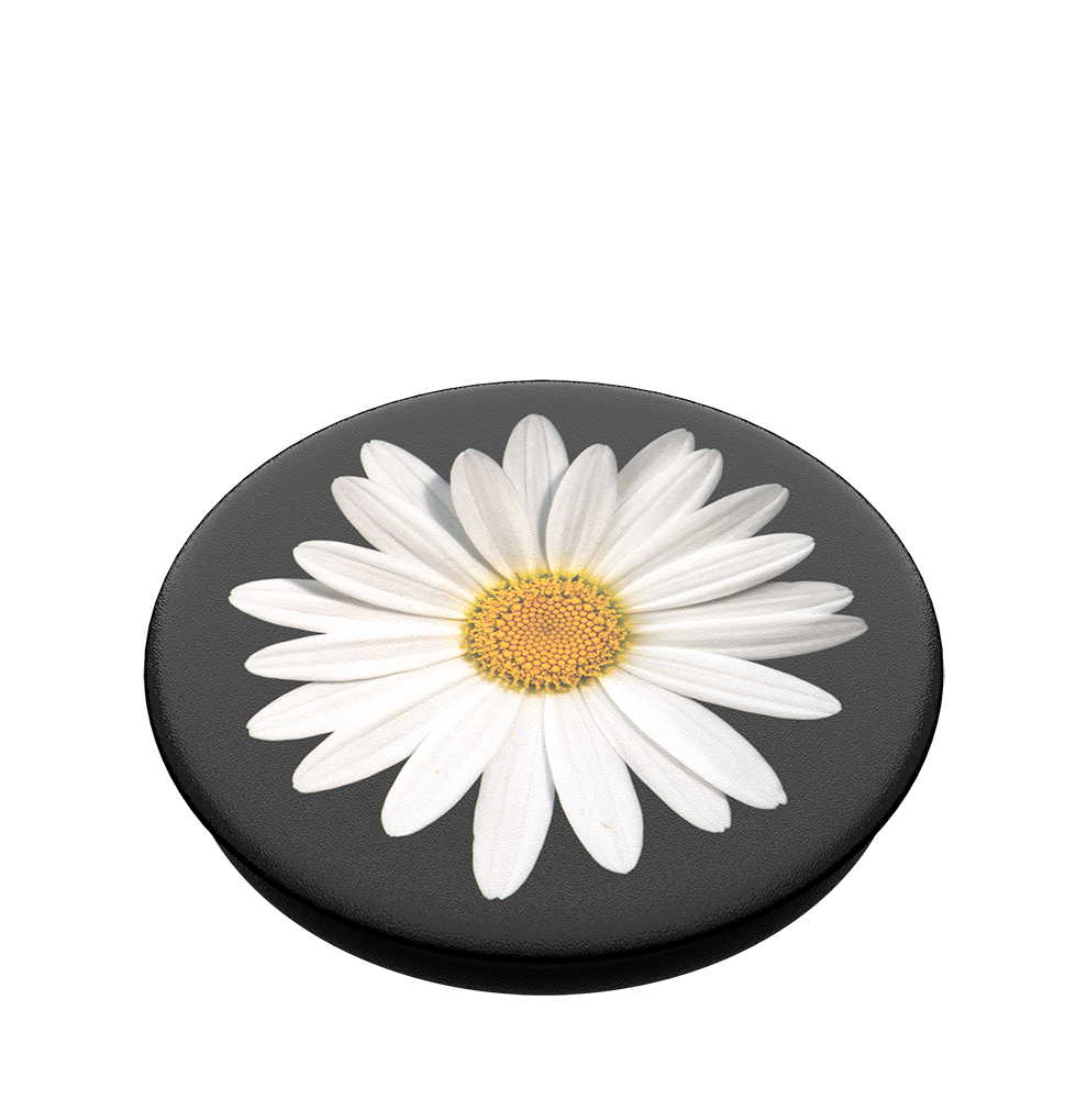 Swappable White Daisy, PopSockets