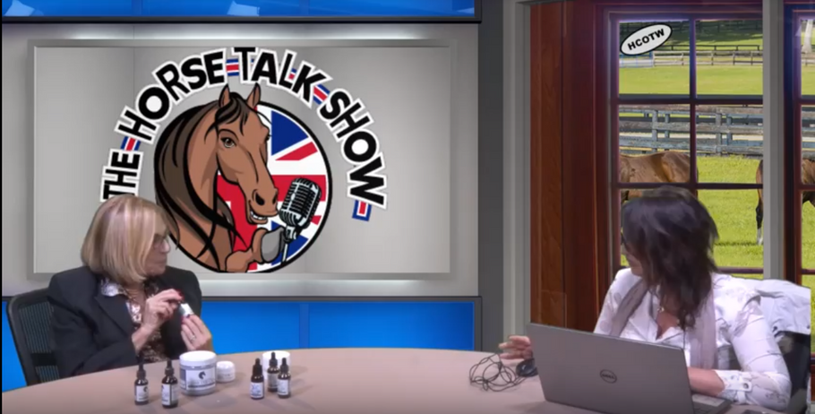 Lesly's appearance on The Horse Talk Show