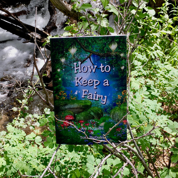 Fae Folk World Book Cover How to Keep a Fairy