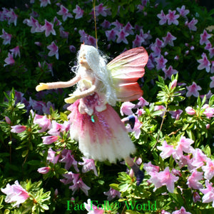 Fae Folk® Fairies - FLITTER
