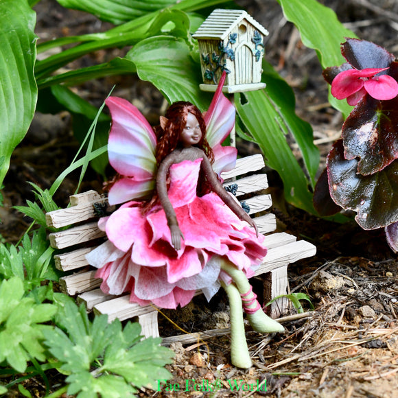 Fae Folk® Fairies - ANEMONE