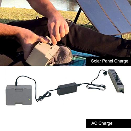 LionCooler 12.6V 3A Battery Charger, AC/DC Power Adapter