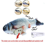 Giant Fish USB Charging Cat toys