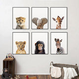 Baby Animals Canvas Wall Prints - Einhorn Homewares