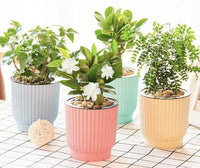 Self-Watering Plant Pots - 5 Colours - Einhorn Homewares