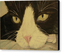 Sissi The Cat 3 - Canvas Print