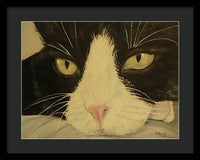 Sissi The Cat 3 - Framed Print