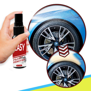 Easy Paint Remover