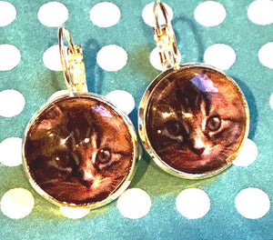 Cat glass cabochon earrings - 16mm