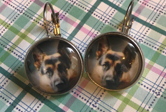 German Shepherd glass cabochon earrings - 16mm