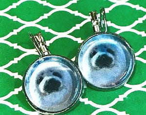 Baby seal earrings - 16mm