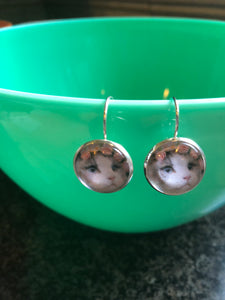 Cat with flower crown cabochon earrings- 16mm