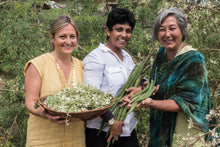 Load image into Gallery viewer, Moringa Growers & Educators Certification Program