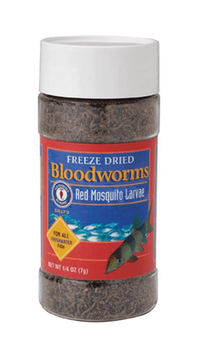 San Francisco Freeze Dried Bloodworms 7G