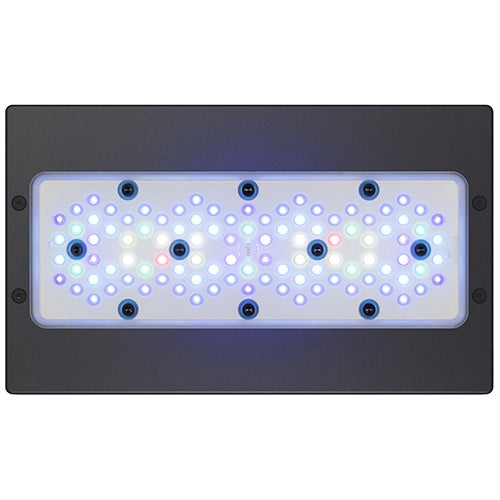 Ecotech Radion G5 LED XR30G5BLUE