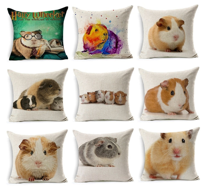 Piggly Wiggly high quality cushions that will bring comfort to your room