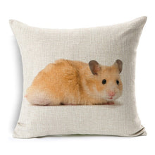 Load image into Gallery viewer, Piggly Wiggly high quality cushions that will bring comfort to your room
